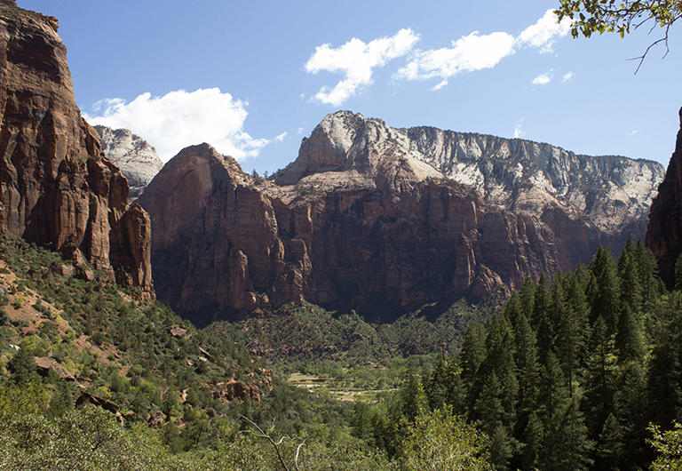 View of Zion Canyon greenery and mountains.