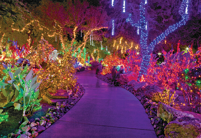 Holiday Lights at Ethel M. Chocolate Factory Cactus Garden